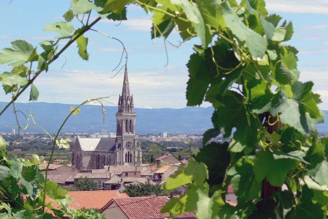 Vin de Cornas à la cave Vinum 26