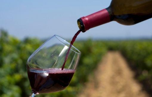 Vins de la Vallée du Rhône chez Vinum Caviste 26